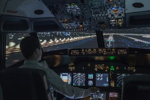 Du bist der Pilot im Flugsimulator Mecklenburg-Vorpommern